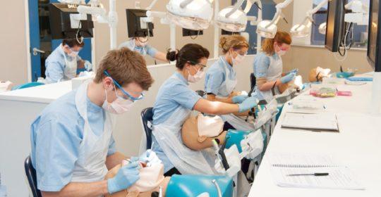 Studia stomatologiczne: co czeka na przyszłych studentów tego kierunku?