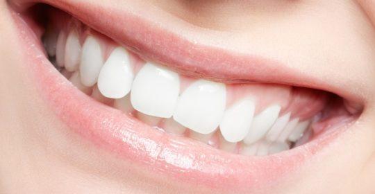 Komórki macierzyste w mleczakach i zębach stałych